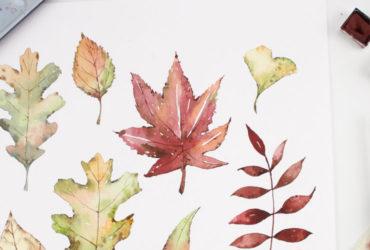 Pintar hojas secas con acuarela